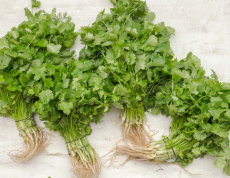 A Lesson In: Parsley